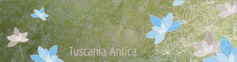 Τεχνοτροπία Tuscania Antica από την Novacolor