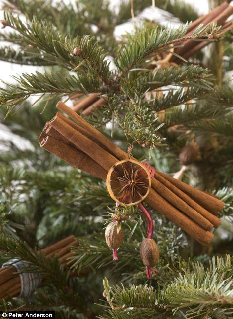 Όμορφα φυσικά χριστουγεννιάτικα στολίδια που μπορείτε να κάνετε μόνοι σας
