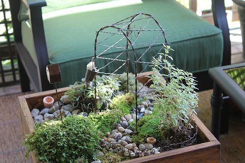 Πως να φτιάξετε μόνοι σας μια επιτραπέζια μινιατούρα κήπου