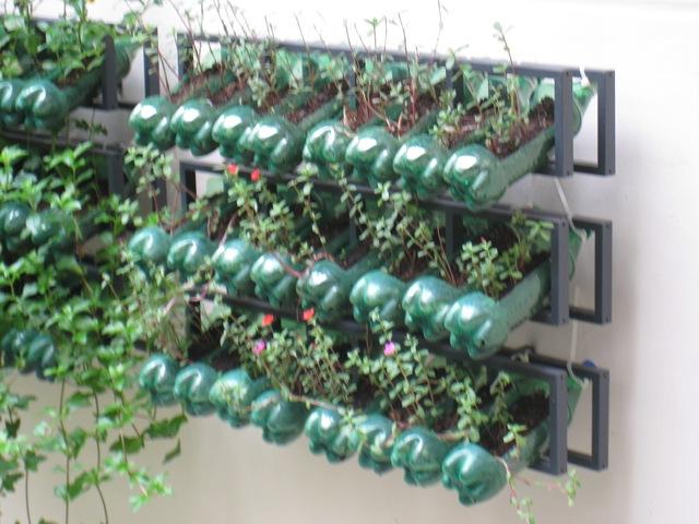 κήπος από πλαστικά μπουκάλια12