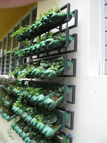 κήπος από πλαστικά μπουκάλια13