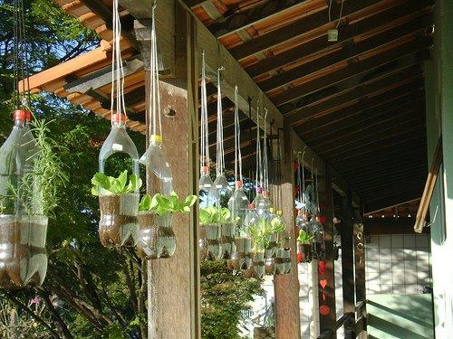 κήπος από πλαστικά μπουκάλια15