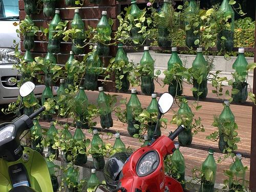 κήπος από πλαστικά μπουκάλια9