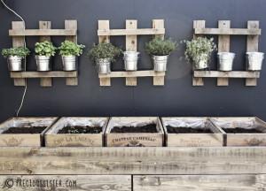 Diy κήπος με βότανα στο μπαλκόνι
