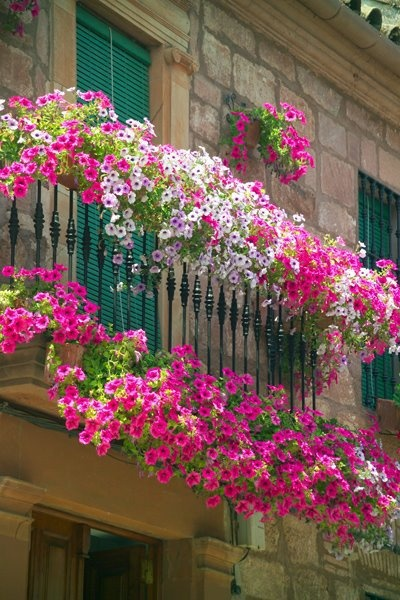 Διακόσμηση μπαλκονιού με λουλούδια22