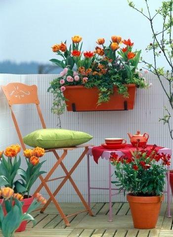 Διακόσμηση μπαλκονιού με λουλούδια31