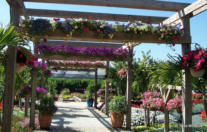 26 Ιδέες Σχεδιασμού Πέργκολας - Μετατρέψτε τον κήπο σας σε ένα ήσυχο καταφύγιο