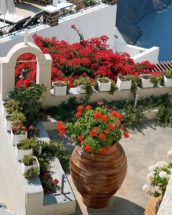 Αστικός Κηπουρός: Κήποι στην ταράτσα