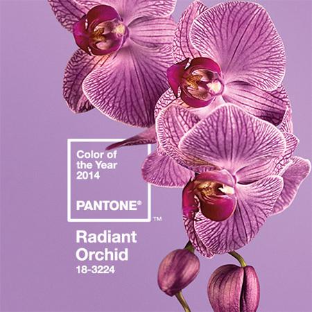 Radiant Orchid - Pantone Χρώμα της χρονιάς για το 2014