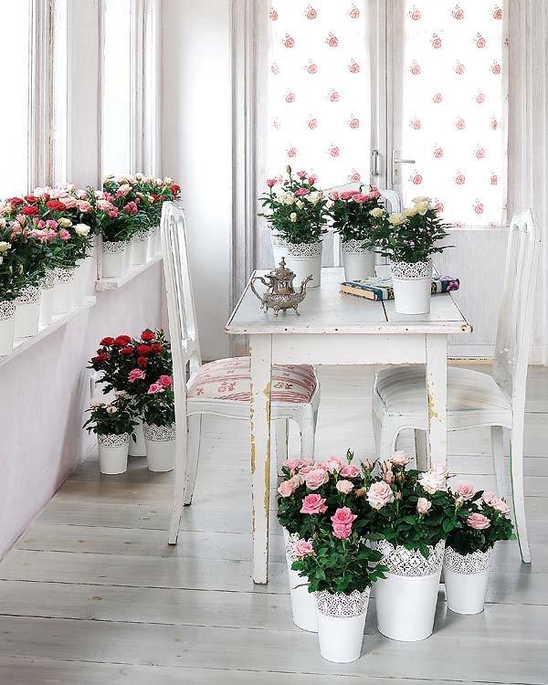 Λουλούδια σε κάθε γωνιά2