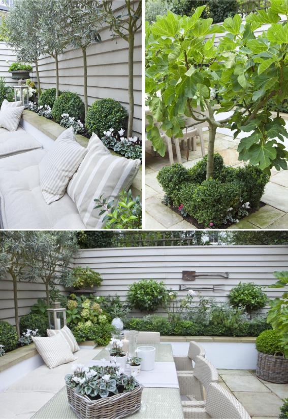 Ένας απίθανος κήπος με γεύση μεσογειακή3