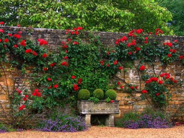 Απίστευτα Ελκυστικές Ιδέες που μπορείτε να εφαρμόσετε στον κήπο σας5