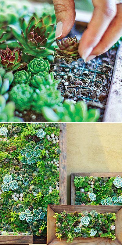 έργα δημιουργικής κηπουρικής1