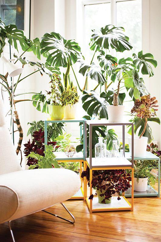 έργα δημιουργικής κηπουρικής14