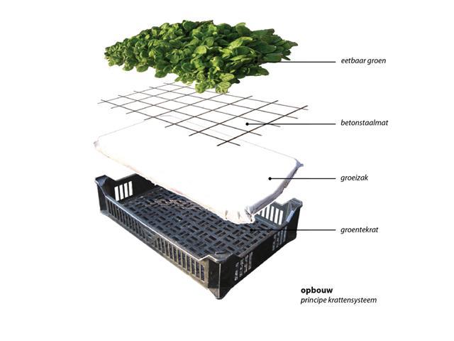 eathouse μια ιδέα κήπου σε μορφή σπιτιού3