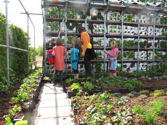 eathouse μια ιδέα κήπου σε μορφή σπιτιού5