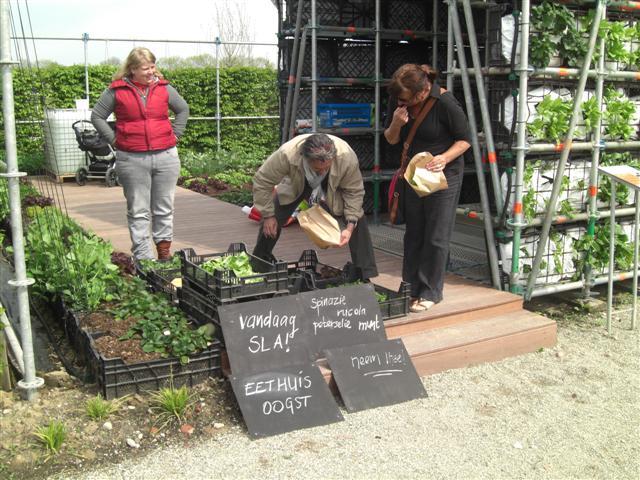 eathouse μια ιδέα κήπου σε μορφή σπιτιού9