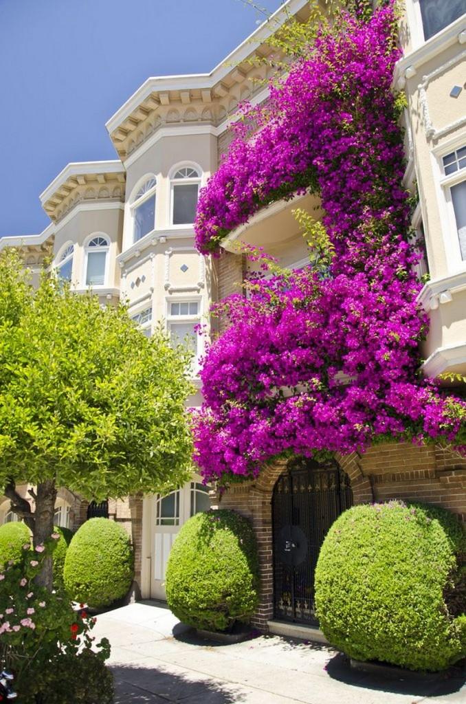 υπέροχοι κήποι μπαλκονιών2