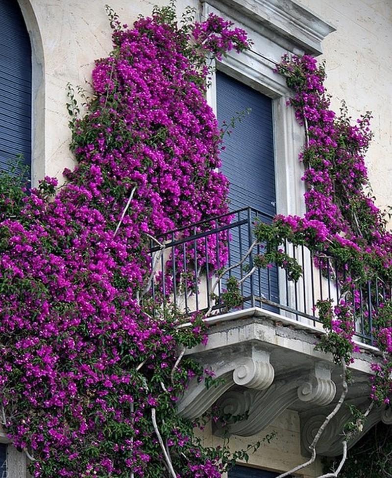 Красивые балконы.
