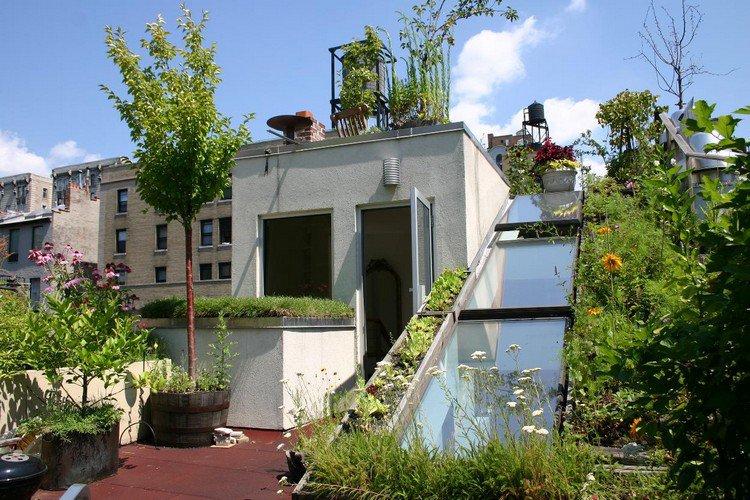 Κήπος στην ταράτσα ιδέες12