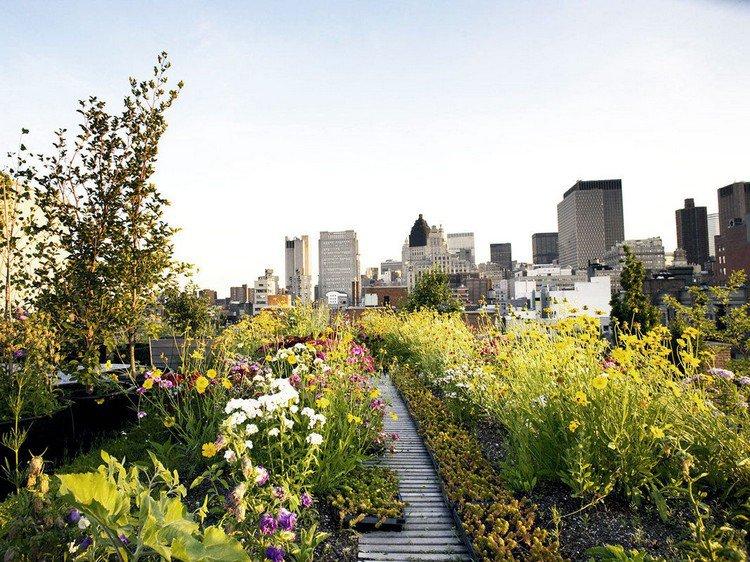 Κήπος στην ταράτσα ιδέες2