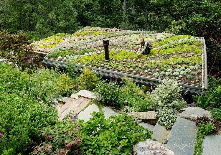Κήπος στην ταράτσα ιδέες30