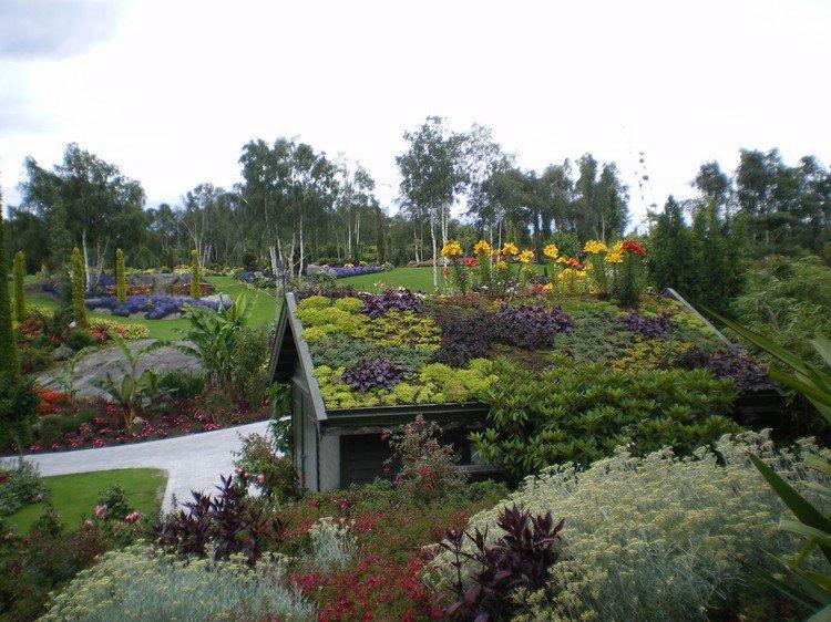 Κήπος στην ταράτσα ιδέες44