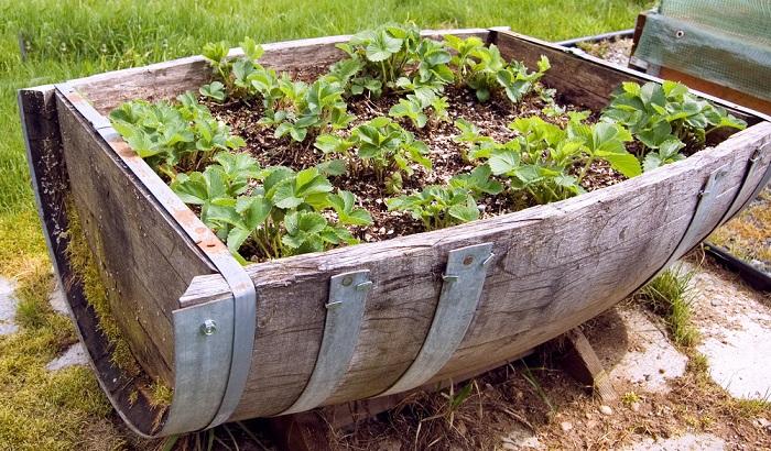 Ρουστίκ διακόσμηση κήπου24