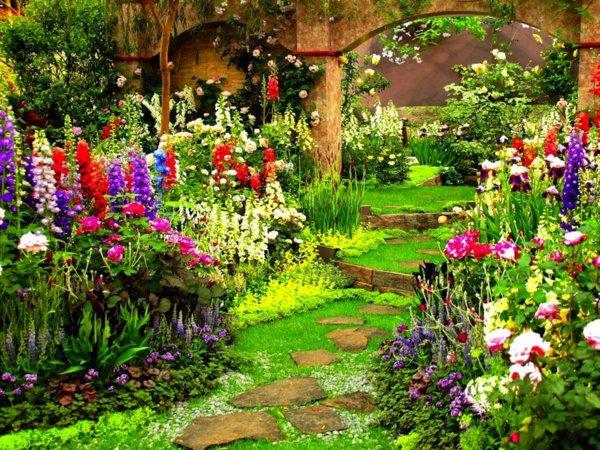 φυτογραφίες για το σχεδιασμό κήπων102