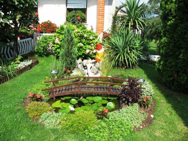 φυτογραφίες για το σχεδιασμό κήπων103