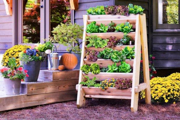 φυτογραφίες για το σχεδιασμό κήπων106