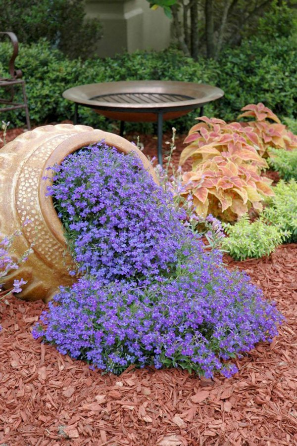 φυτογραφίες για το σχεδιασμό κήπων107