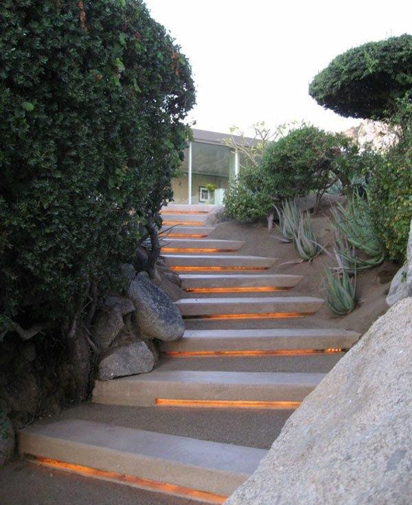φυτογραφίες για το σχεδιασμό κήπων23