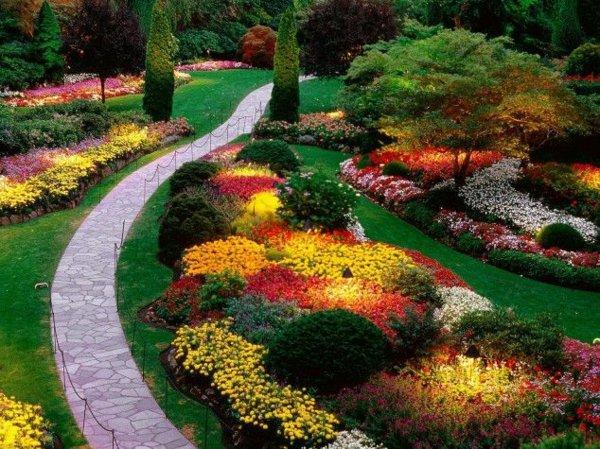 φυτογραφίες για το σχεδιασμό κήπων4