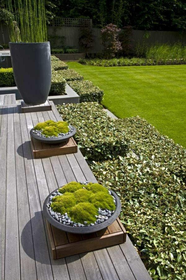 φυτογραφίες για το σχεδιασμό κήπων57