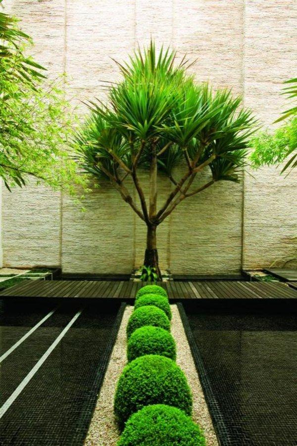 φυτογραφίες για το σχεδιασμό κήπων81