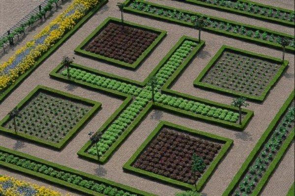 φυτογραφίες για το σχεδιασμό κήπων82