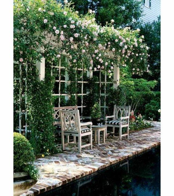 φυτογραφίες για το σχεδιασμό κήπων94