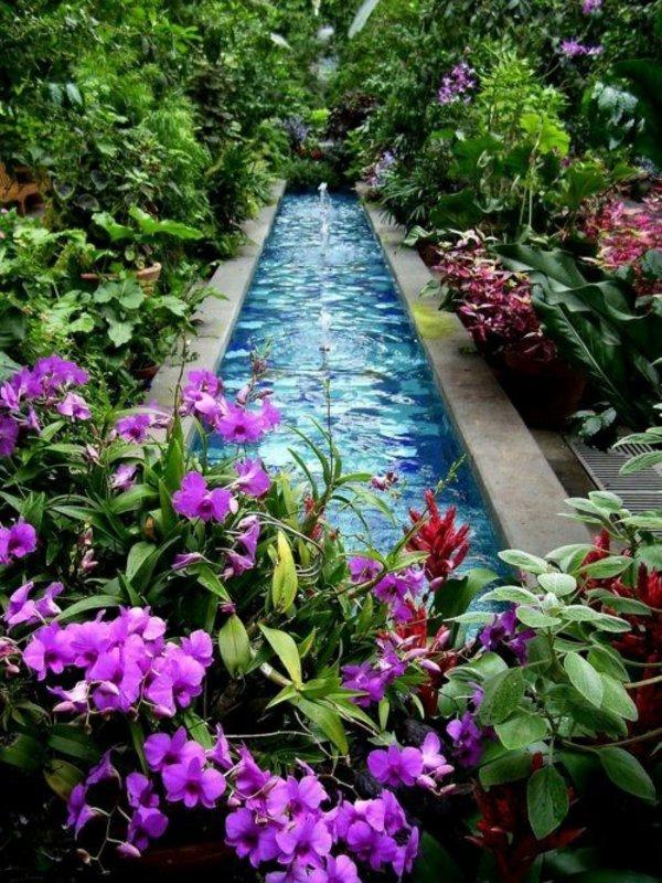 φυτογραφίες για το σχεδιασμό κήπων95