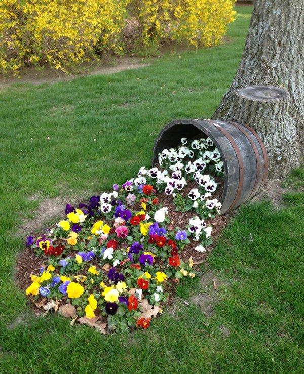 φυτογραφίες για το σχεδιασμό κήπων96