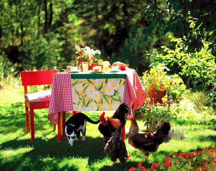 πικνίκ όνειρα στον κήπο22