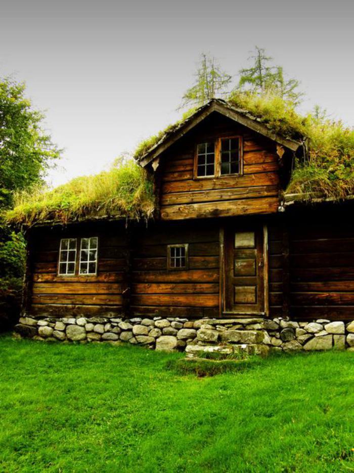 Πράσινη στέγη ιδέες13