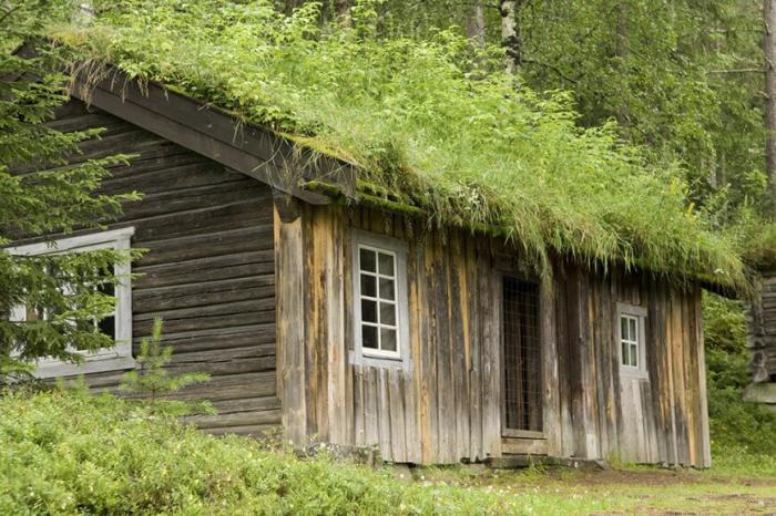 Πράσινη στέγη ιδέες19