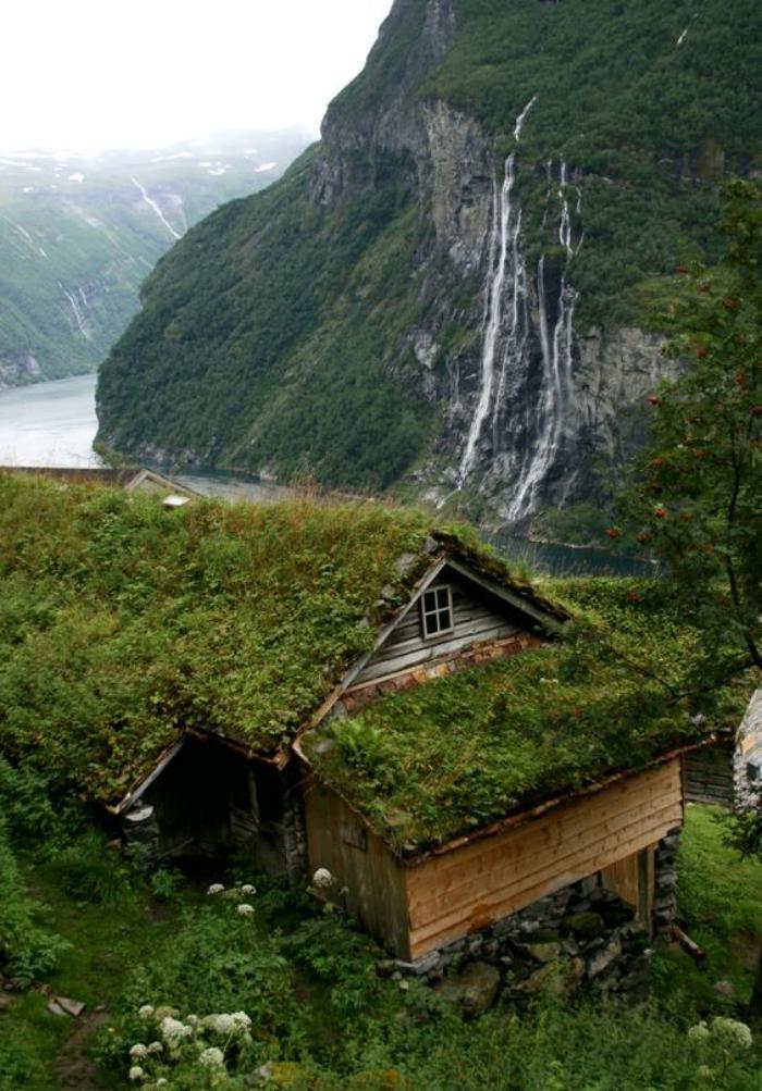 Πράσινη στέγη ιδέες3