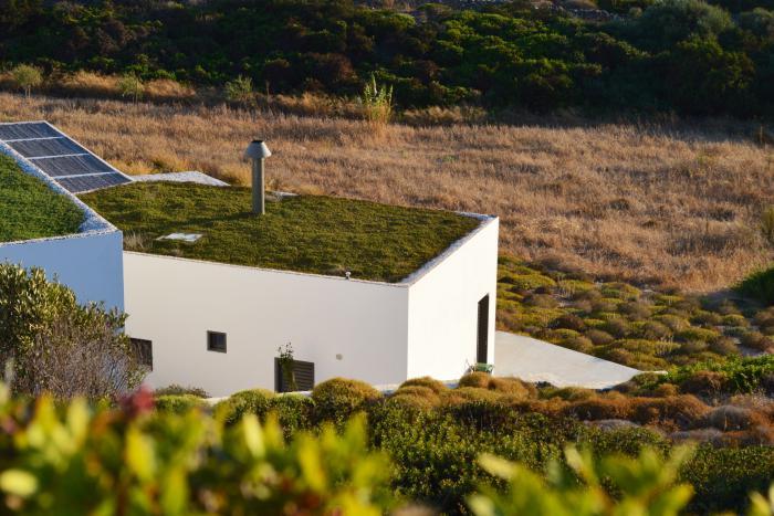Πράσινη στέγη ιδέες37