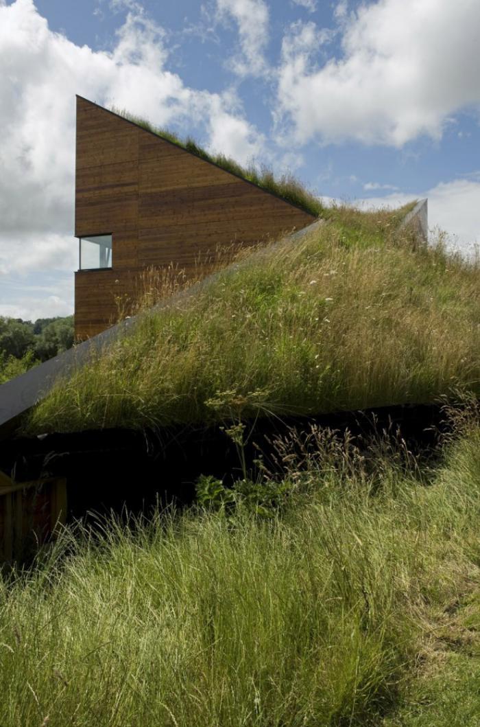 Πράσινη στέγη ιδέες45