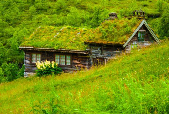 Πράσινη στέγη ιδέες6