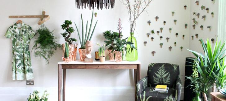 Ιδέες για το πώς να προβάλετε φυτά εσωτερικού χώρου αρμονικά