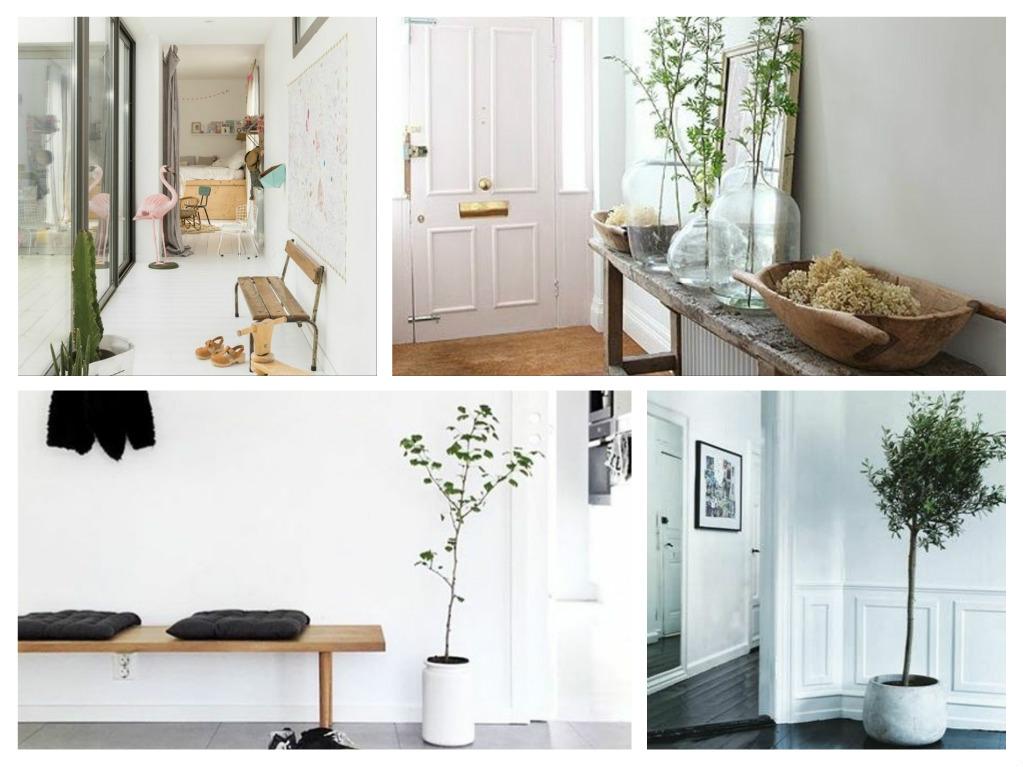 30 Πρωτότυπες ιδέες διακόσμησης διαδρόμου με φυτά