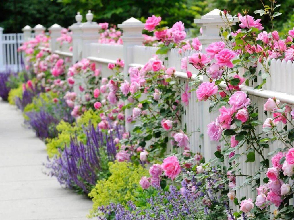 ιδέες σχεδιασμού μπροστινού κήπου και αυλής38